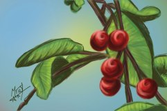 Berries in a Tree